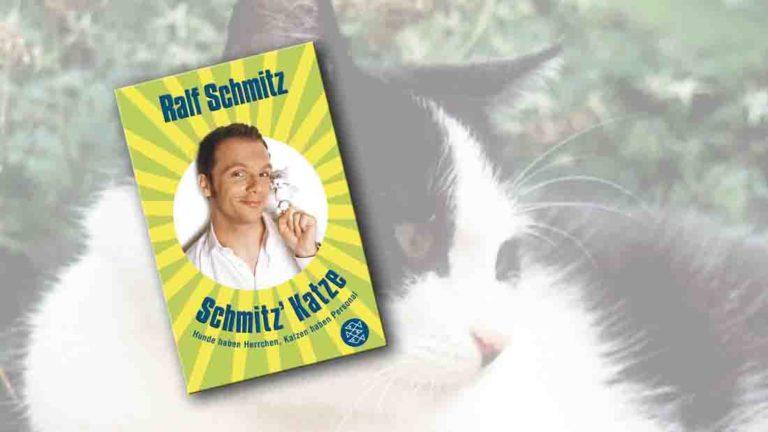 """Buchcover von """"Schmitz Katze"""" im Vordergrung, im Hintergrund eine schwarz-weiße Katze"""